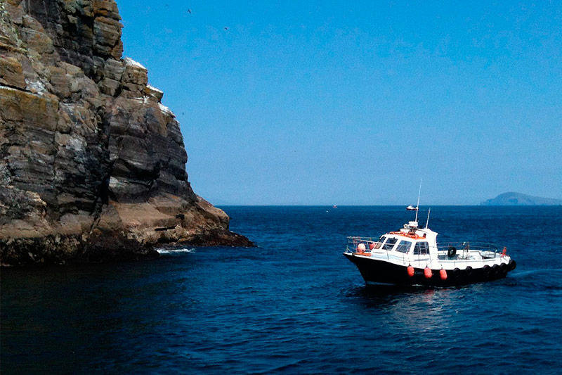 Donal McCrohan Skellig Boat Trips